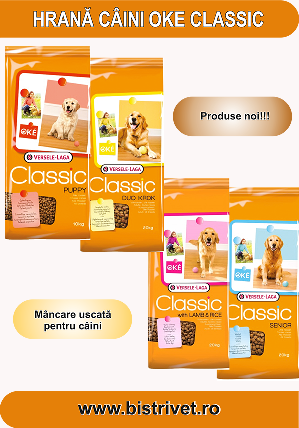 catalog expo canin 2017 4
